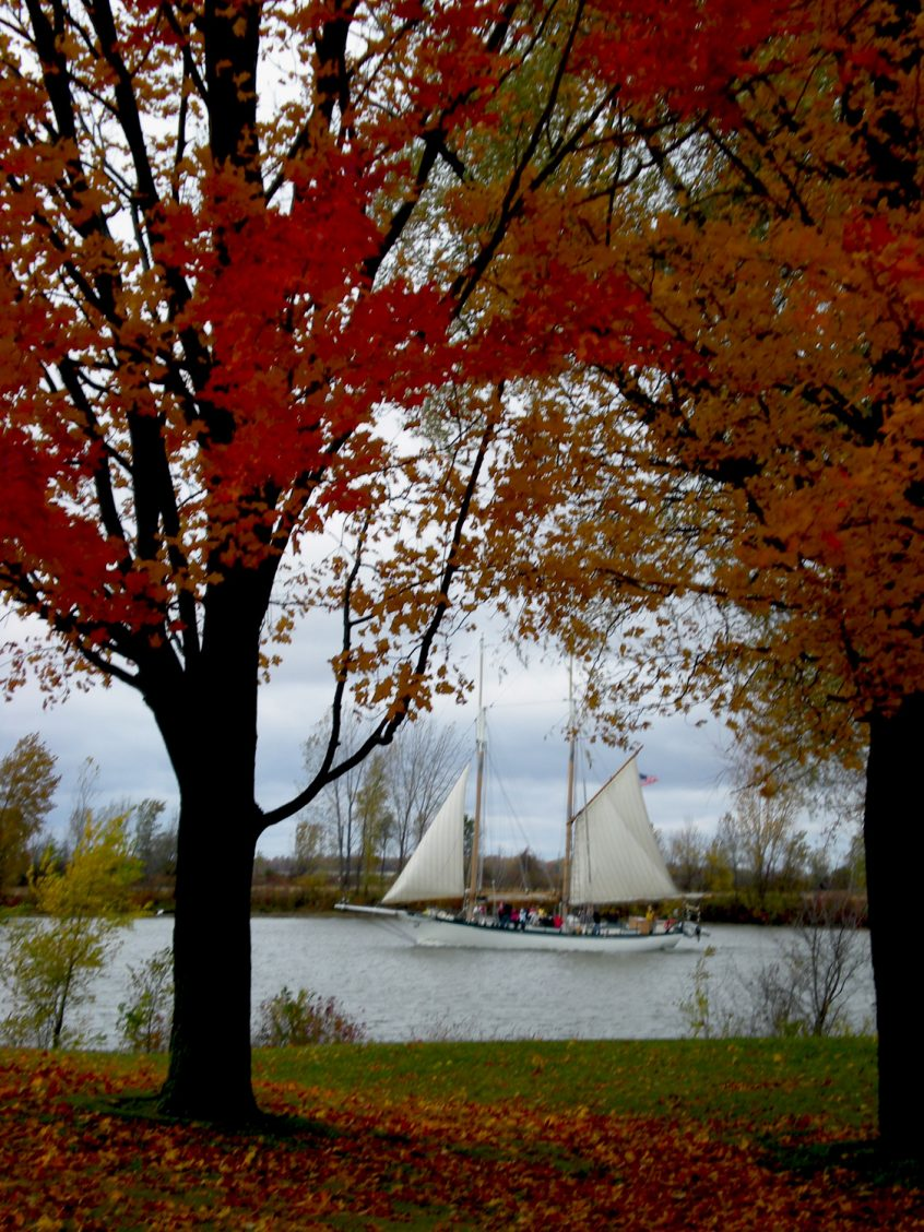 Autumn Color Cruises - BaySail
